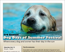 dog days brochure