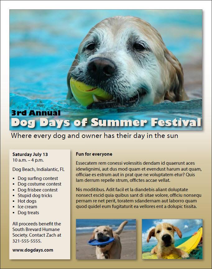 dog days brochure